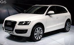 Autožárovky Audi Q5